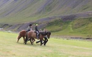 Börn bregða sér á hestbak